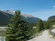 Im Jasper National Park