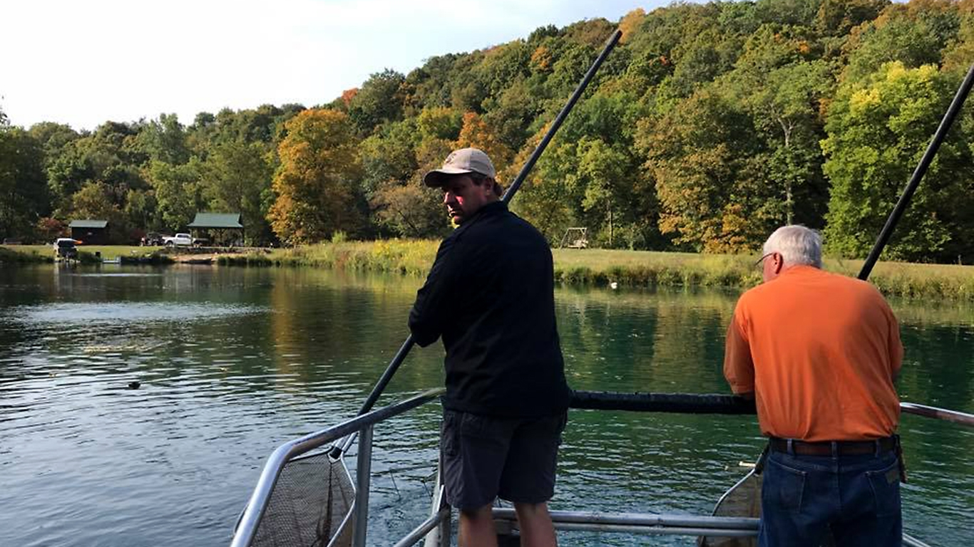 One More Opportunity For Pond Audits With Electrofishing