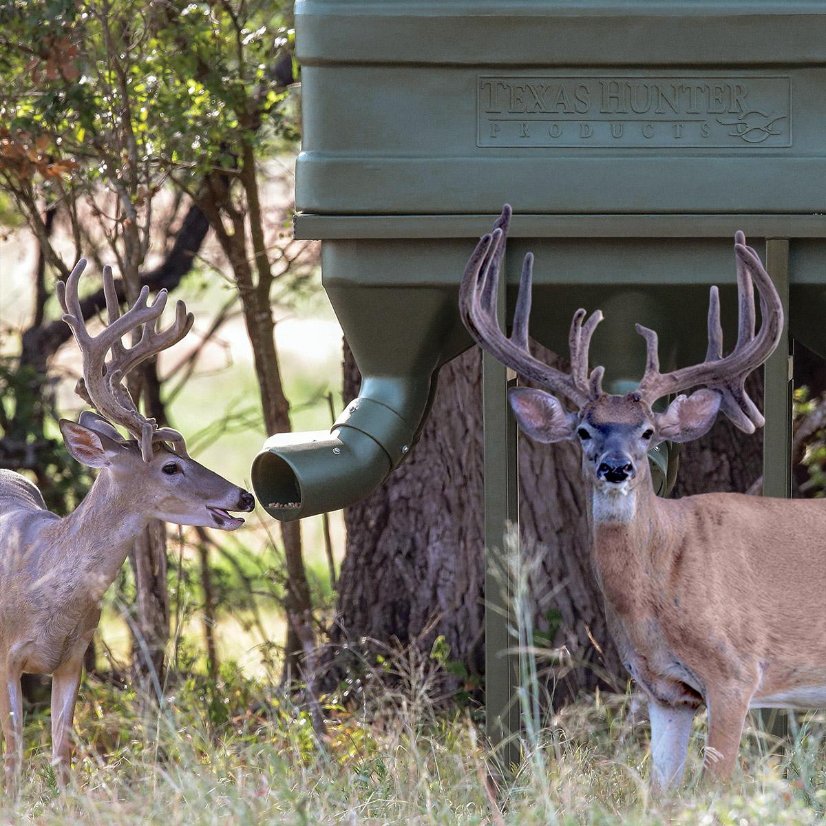 Wildlife Feeders Archives