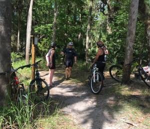biking and kayaking
