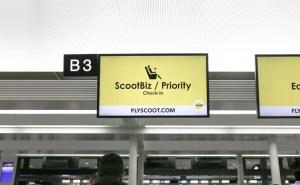 スクートビズの実力やいかに?Scoot Biz 搭乗レポート