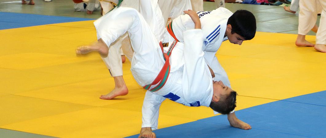 2-Slider_Judo