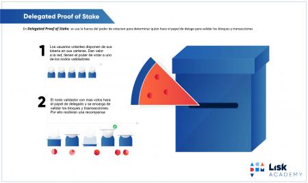 Delegated Proof Of Stake o Prueba de estaca delegadada Infografia