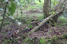 camouflagehide1