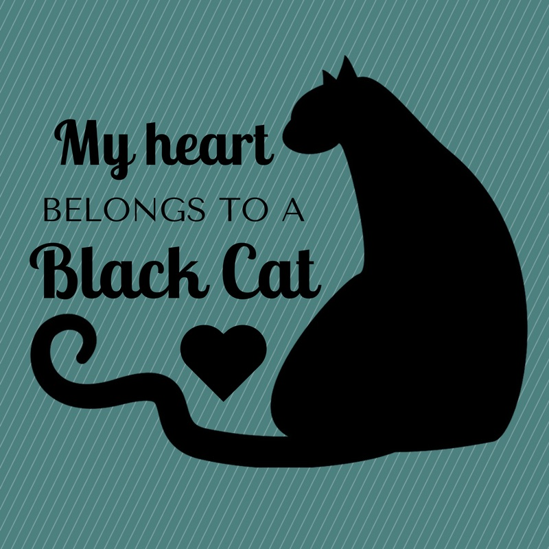 My Heart Belongs to a Black Cat