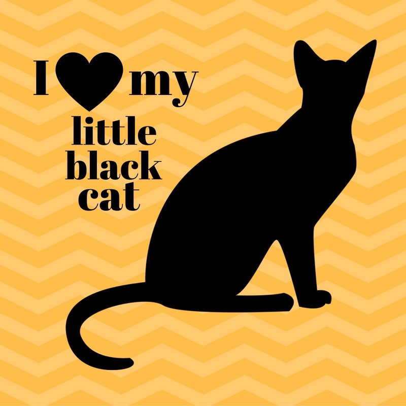I Love my Little Black Cat