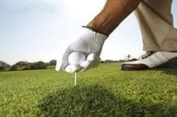 Black Chamber of Commerce 21st Annual Celebrity Golf Classic