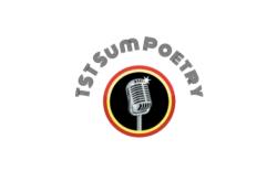 Towne Street Theatre Presents: Nights of Sum Poetry!