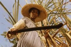 Sankofa - Film Screening/Q&A
