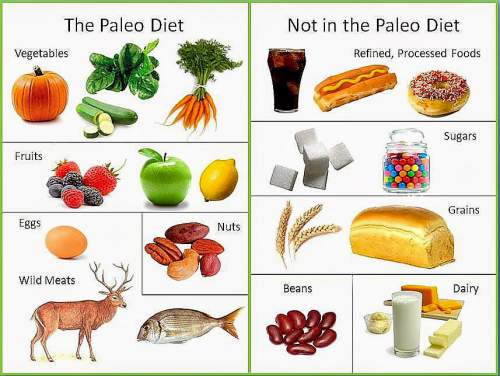 Paleo diet :Detox Diet :10 Best Detox Cleanse Diet for Weight Loss At Home