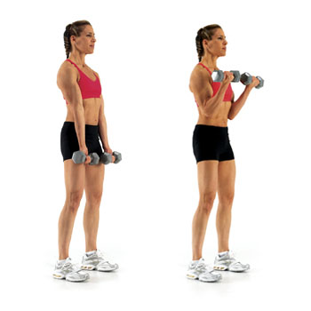 Best Upper Body Gym Exercises for Women to Sculpt Your Muscles