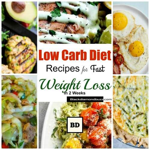 Low Carb Diet Meals Recipes for Fast Weight Loss in 2 ...