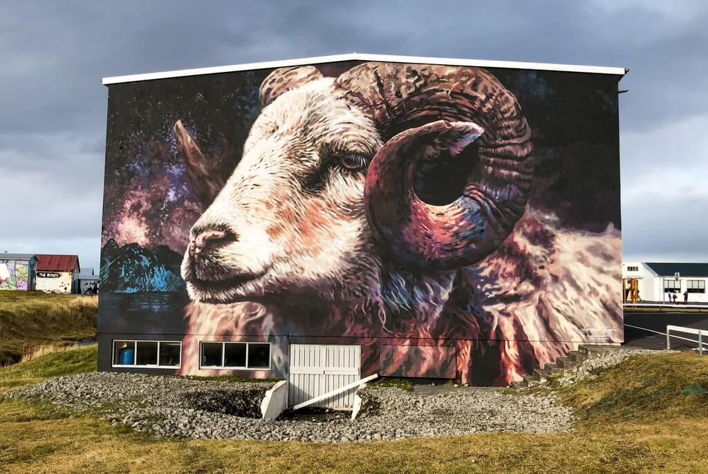 Street art schapen IJsland Hellissandur