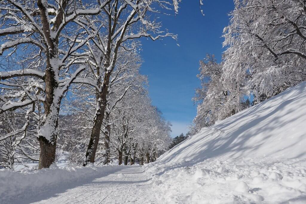 Winterwandelen Schwäbische Alb in Balingen