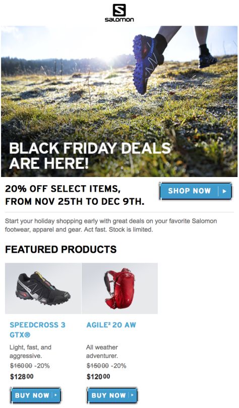 Salomon Black Friday 2015 Flyer - Page 1