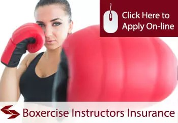 self employed boxercise instructors liability insurance