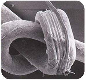 hairknot