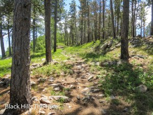 The trail up Crow Peak Spearfish SD