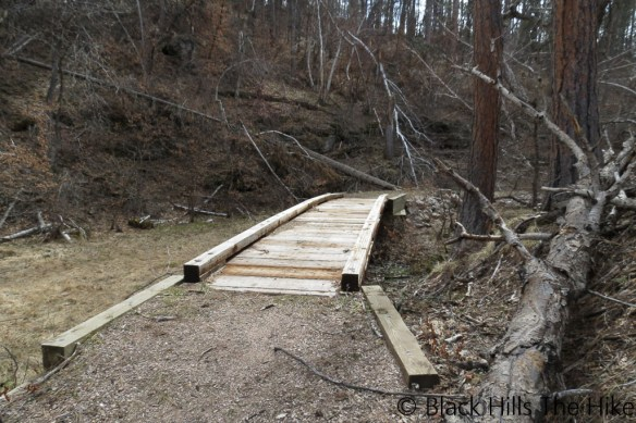 Foot Bridge on Dugout Gulch