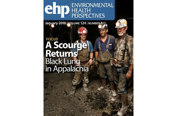 cover of January 2016 issue of Environmental Health Perspectives