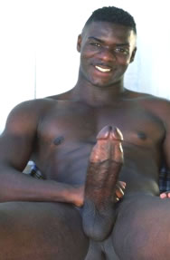 big black horse cock