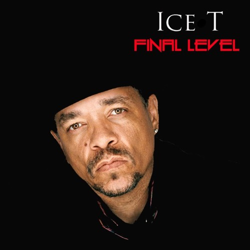 ice t final level
