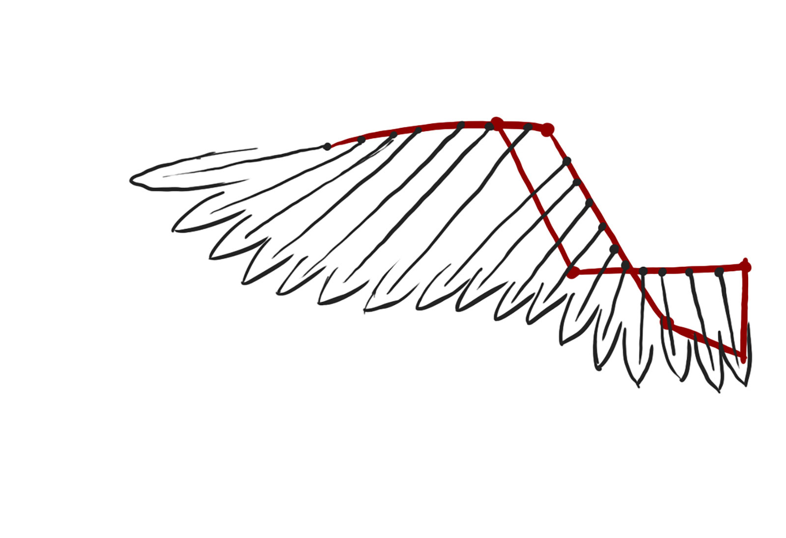Tutorial Crafting Articulated Wings