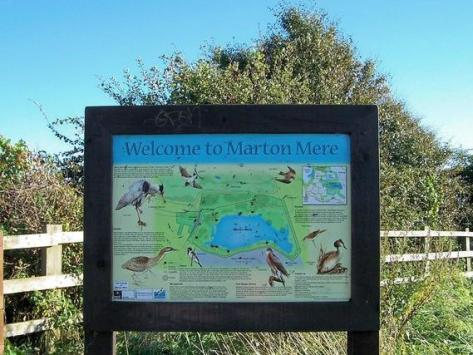 Marton Mere Local Nature Reserve, home to hundreds of species of wildlife, is nationally recognised as a Site of Special Scientific Interest. From dragonflies to orchids, visitors can enjoy the site via a series of designated footpaths and bird hides. During April to September, you can access the site by parking on East Park Drive or Lawson Road.