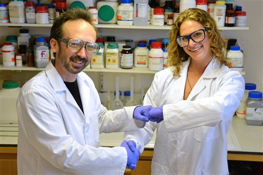 In this undated photo provided by Prifysgol Aberystwyth University researchers David Whitworth, left, and Sara Mela, pose for photo in the lab at Prifysgol Aberystwyth University in Aberystwyth, Wales. According to results published online Monday, July 28, 2014, in the American Journal of Infection Control the researchers found that the knocking of knuckles, fist bump, spreads only one-twentieth the amount of bacteria that a handshake does. (AP Photo/Prifysgol Aberystwyth University)
