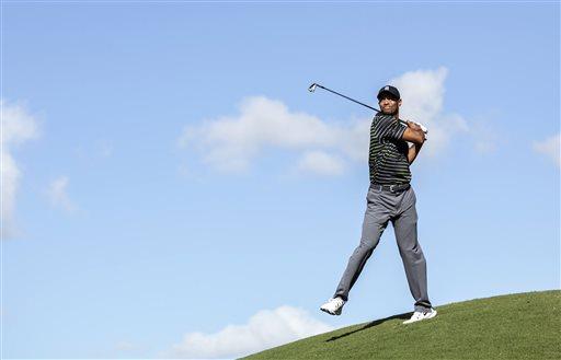 APTOPIX World Challenge Golf