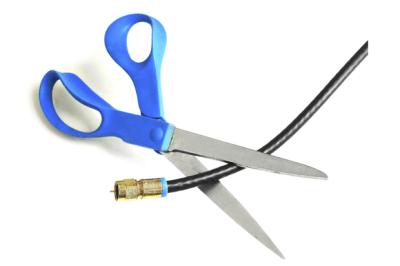 cordcutting-100535448-primary.idge