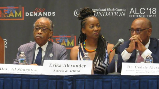 The Rev. Al Sharpton, actress and activist Erika Alexander and Dr. Cedric Alexander, national president of the National Organization of Black Law Enforcement Executives. (Photo by George Kevin Jordan)