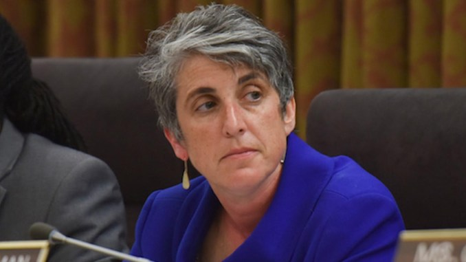 D.C. Council member Elissa Silverman (Jahi Chikwendiu/The Washington Post)