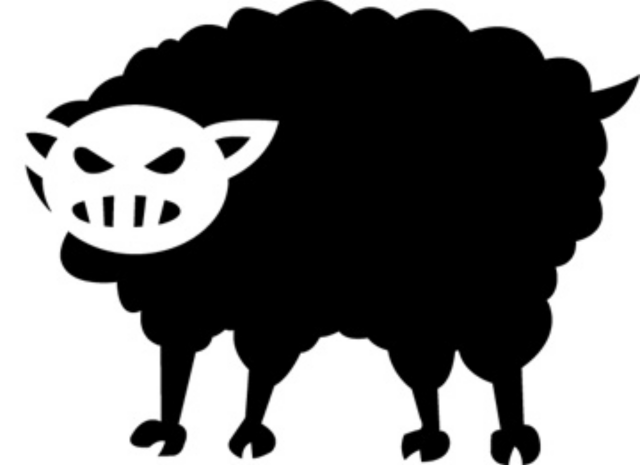 Black Sheep Warrior