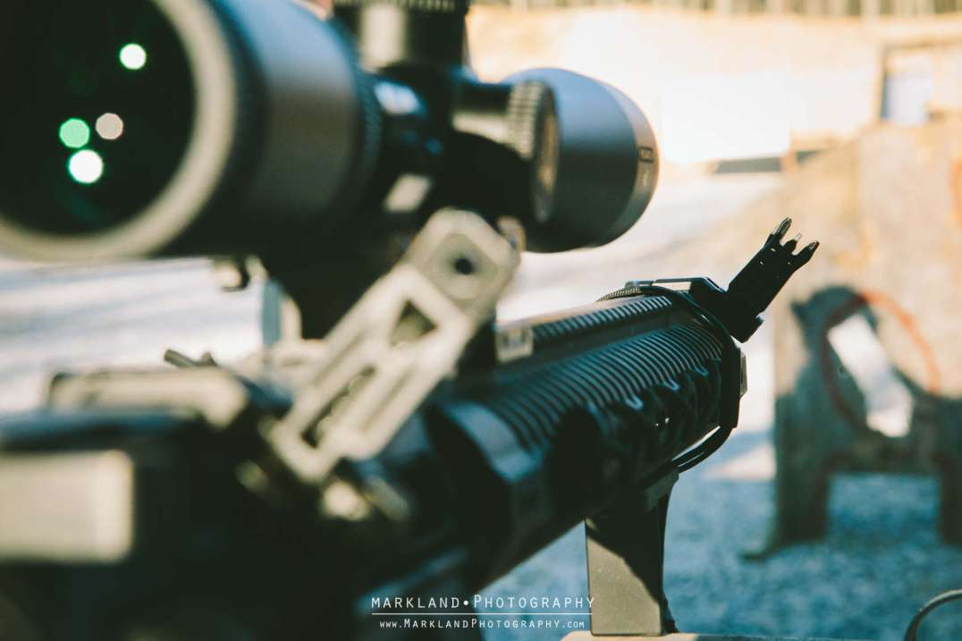 Magpul Offset BUIS Photo Credit: Markland Photography