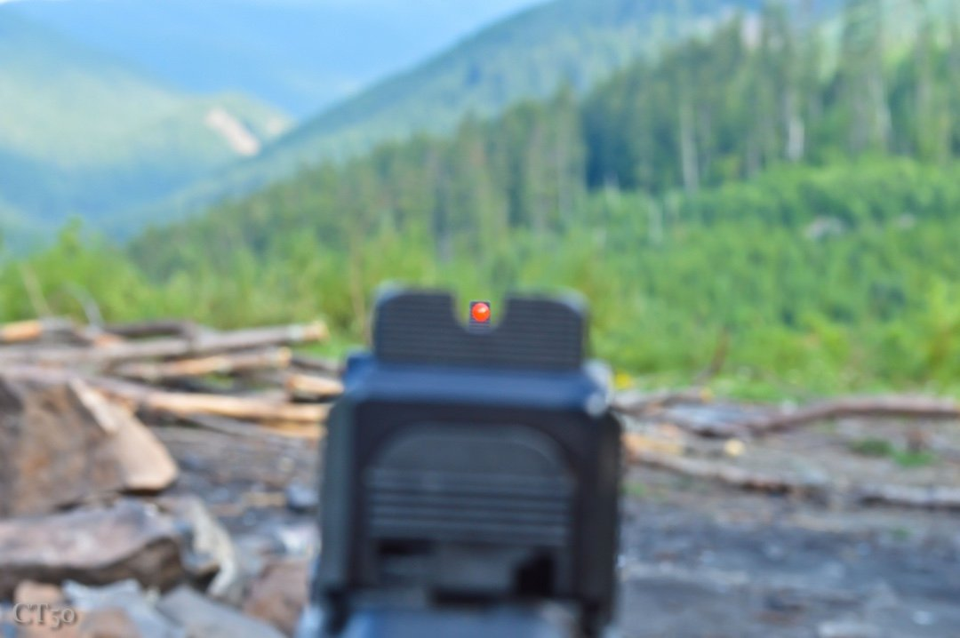 Frank Proctor Sight review