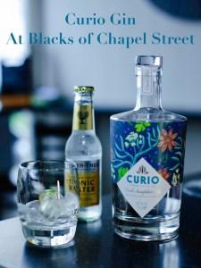 Curio Gin at Blacks of Chapel Street