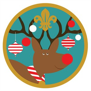 Scout Christmas Appeal 2016 Blacktoft Beacon District Scouts