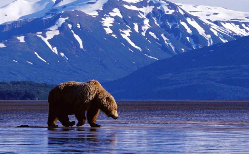 The Best Sites In Alaska