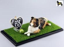 Ax de Shetland Sheepdog