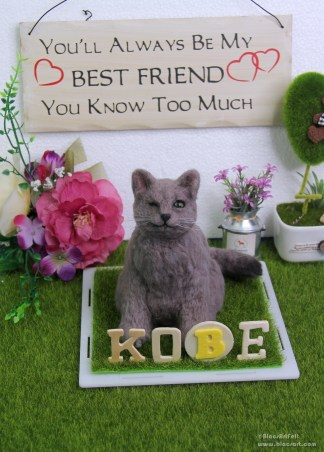 Kobe de Cat