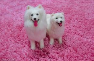 mini Fluffy adult & puppy version