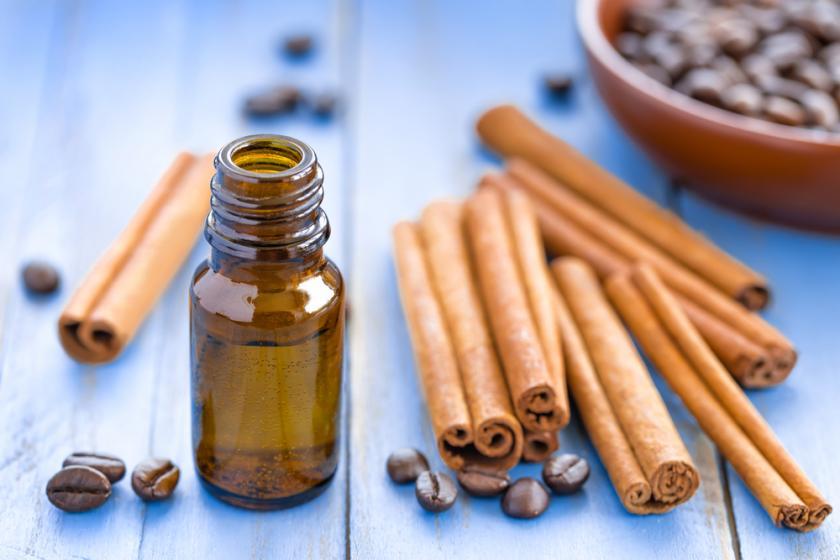 kulit kayu manis dan cinnamon essential oil (minyak atsiri kayu manis)