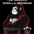 Vanilla Gorilla Program 1