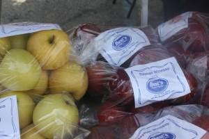 Best Fruit Farm