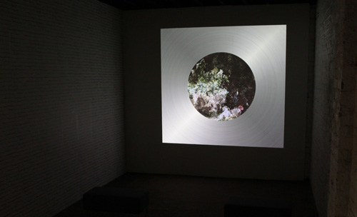 Selma Hreggvidsdottir, 'Shrine'
