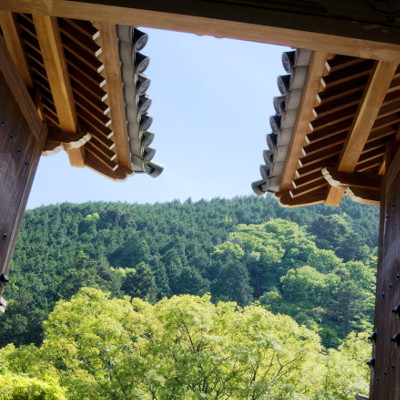 Nishiyama 8 (www.blairthomson.com)