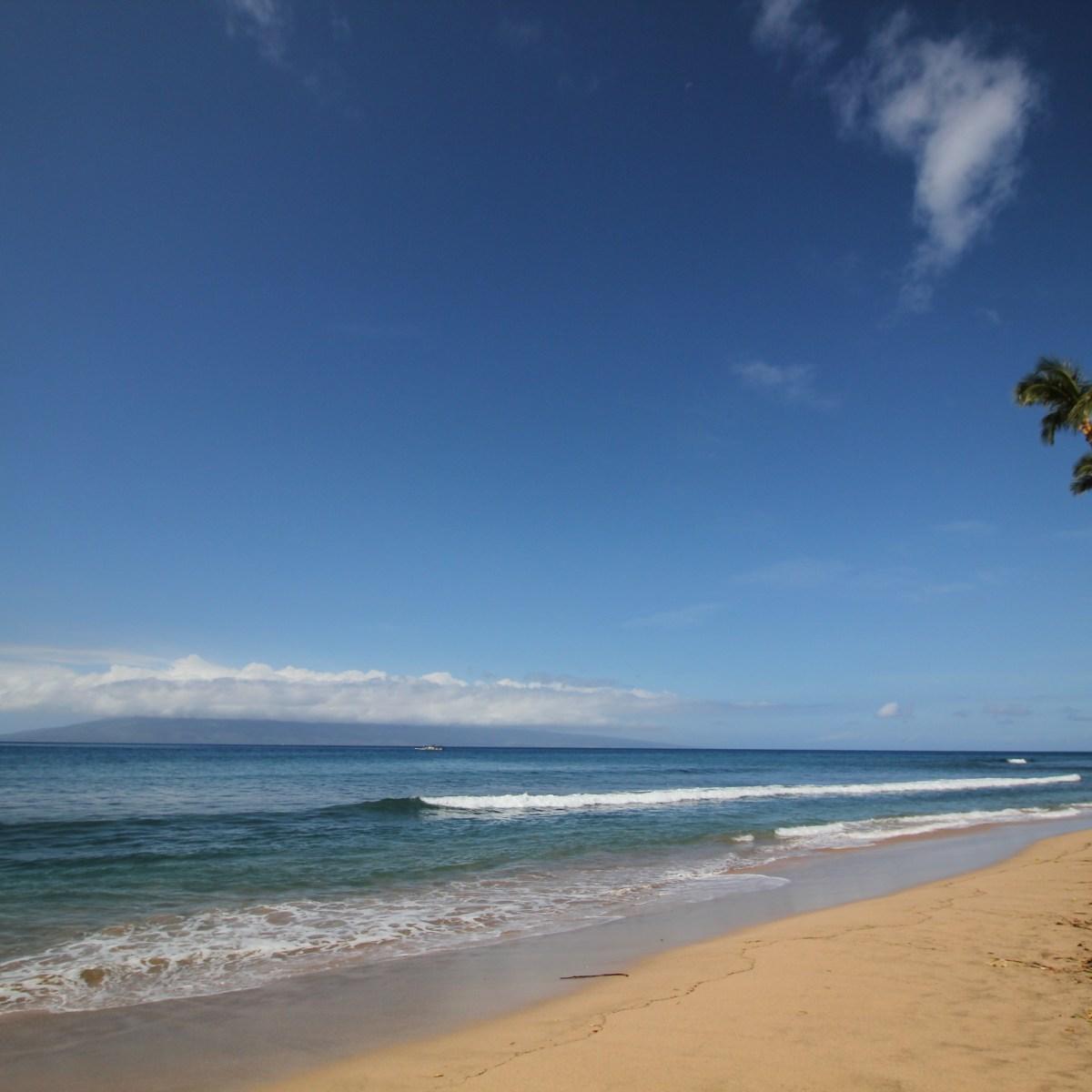 Maui Hawaii Hyatt Beach