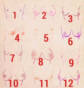 breast-shapes-002