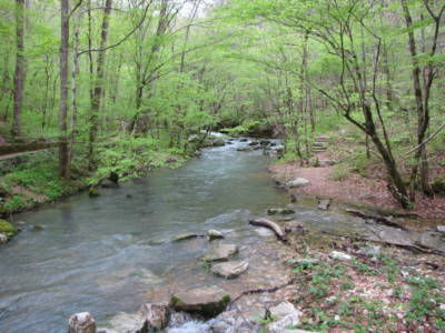 Mill Creek at Blanchard Springs 2
